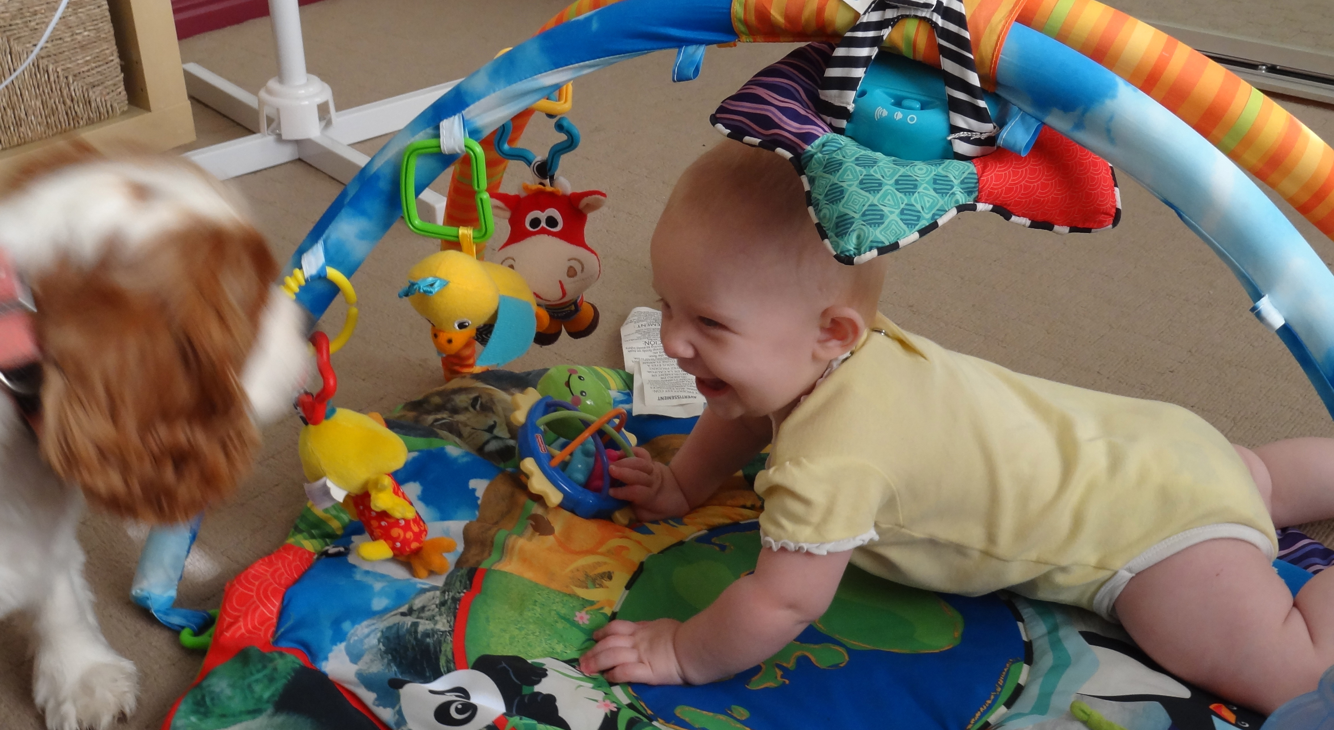 caro rose creations Dernier jour de baby-sitting