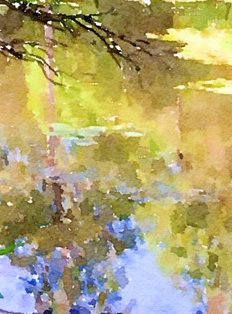 Screen Shot 2019-04-28 at 2.08.33 pm